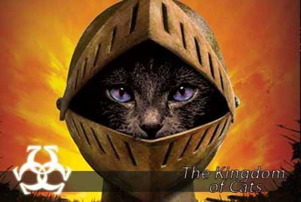 The Kingdom of Cats (Omescape) Escape Room