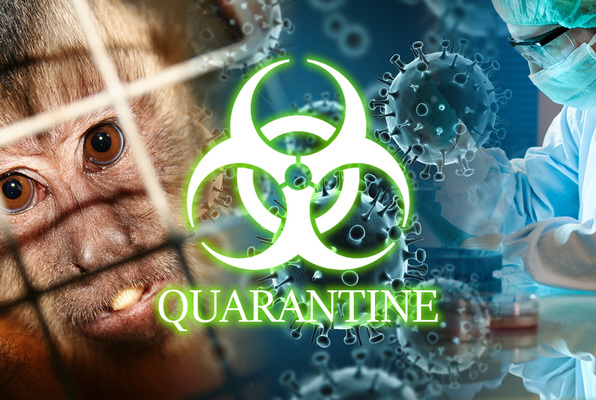 Quarantine (Escape It Houston) Escape Room